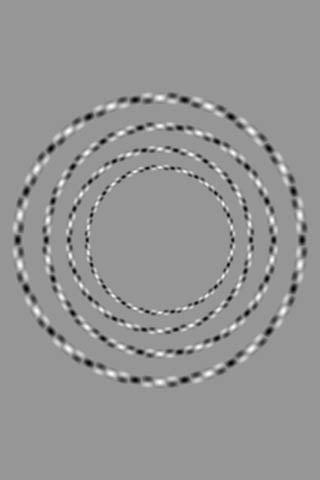 4 ympyrää