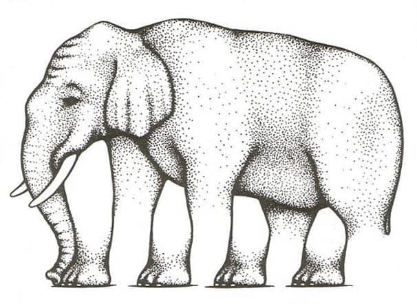 Elefantin jalat optinen harha