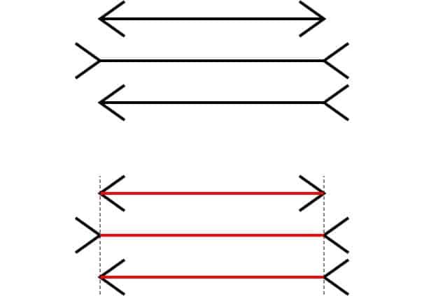 Janat. Kuva: Fibonacci, Wikimedia Commons