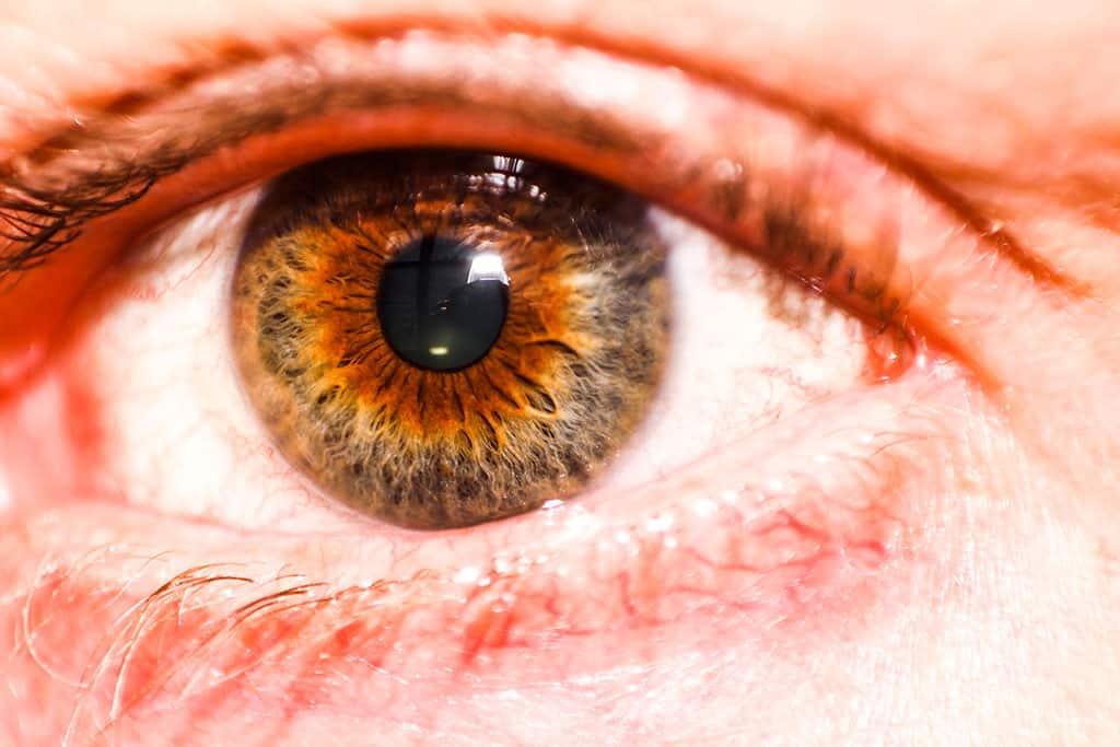 Pähkinänruskea (hazel) silmä