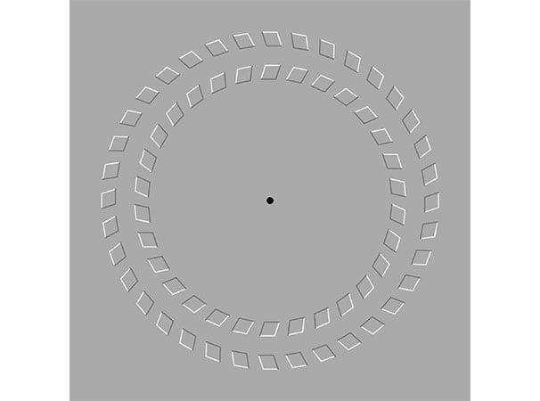 Pyörivät ympyrät optinen harha. Kuva: Fibonacci, Wikimedia Commons